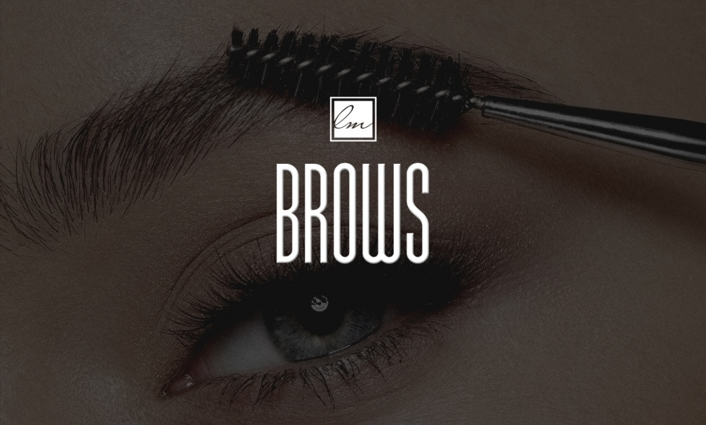 LDM_Brows_banner_blog
